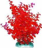 """Растение для аквариума Уют """"Бакопа красная"""", высота 20 см"""