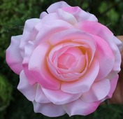 Цветок искусственный Роза головка 10х6см микс W583