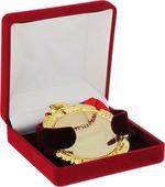 Медаль сувенирная Lefard Звезда радиоэфира, 497-301