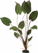 """Растение для аквариума Barbus """"Эхинодорус бархатный"""", шелковое, цвет: зеленый, бордовый, высота 50 см"""