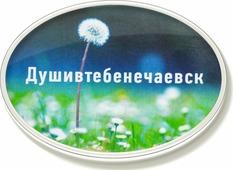 """Магнит Бюро находок """"Душивтебенечаевск"""", цвет: зеленый"""