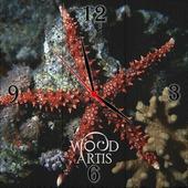 "Настенные часы ""коралловая звезда"""