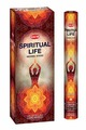 Угольные благовония Hem Incense Sticks SPIRITUAL LIFE (Благовония, духовная жизнь Хем), уп. 20 палочек.