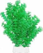 """Растение для аквариума Уют """"Амбулия зеленая"""", высота 24-32 см"""