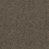 Ковровое покрытие (ковролин) Sintelon Dragon Termo [31431]