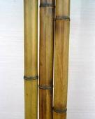 Бамбук обожженный d 30-40мм L=2,8-3м