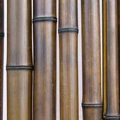 Бамбук шоколадный d 50-60мм L=2,8-3м