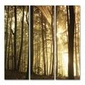FP1077 рамка Trees Canvas Tryptic 90x90см