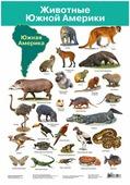 Плакат Дрофа-Медиа Животные Южной Америки