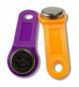 Ключ DS1995L-F5