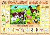 Плакат Маленький гений Домашние животные