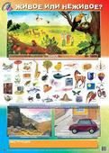 Плакат Маленький гений Веселый Маркер