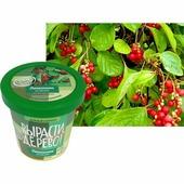 """Зеленый капитал Набор для выращивания """"Вырасти, дерево!"""" - Лимонник китайский"""