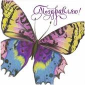 "Мини-открытка Дарите Счастье ""Поздравляю. Бабочка"", 7 х 7 см"