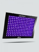 CHAUVET-DJ TFX-UVLED - LED Shadow