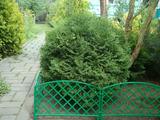 Заборчик декоративный №1 Romanika 2,95м высота 33см (7 эл.) зеленый