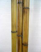 Бамбук обожженный лакированный d 25-30мм L=2,8-3м