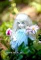 Кукла Fairyland