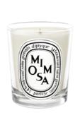 Diptyque Mimosa 190 гр