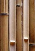 Половинка бамбука обожженная лакированная d 20-30мм L=2,8-3м