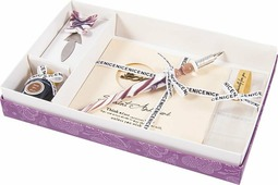 Подарочный набор для письма Русские Подарки: перьевая ручка + чернила + открытка, 38575