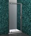 Стеклянная душевая дверь Roltechnik Lega Line LLDO1/90 (прозрачное)