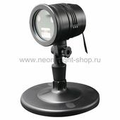 Neon-night 601-261