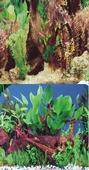 Фон для аквариума BARBUS двухсторонний (Река/Коряга) высота 30см, цена за 1м