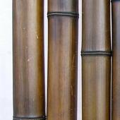 Бамбук шоколадный d 70-80мм L=2,8-3м