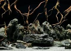 """Фон аквариумный Barbus """"Морская лагуна. Натуральная мистика"""", двухсторонний, 60 см х 124 см"""