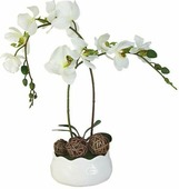 """Цветы декоративные Dream Garden """"Орхидея белая"""", на подставке, 16 х 16 х 36 см"""