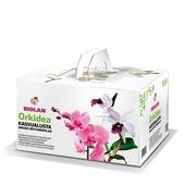 Субстрат для орхидей Biolan
