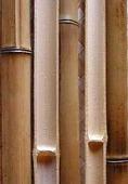 Половинка бамбука обожженная d 20-30мм L=2,8-3м