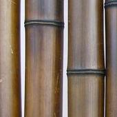 Бамбук шоколадный d 80-90мм L=2,8-3м