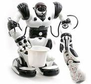 Интерактивная игрушка RUI FENG Roboactor TT313 на