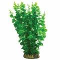 """Растение Laguna 4015AP с распылителем """"Бакопа"""" зеленая"""