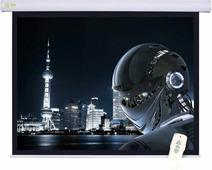 Проекционный экран CACTUS Motoscreen CS-PSM-124x221