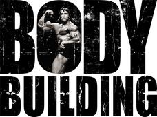 Наклейка на авто Bodybuilding 13 см х 10 см