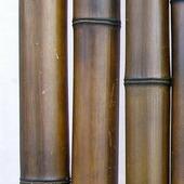 Бамбук шоколадный лакированный d 70-80мм L=2,8-3м