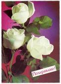 """Открытка (почтовое вложение) """"Поздравляю"""" фот. Костенко 1988 A502301"""