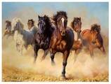 """Рыжий кот Картина по номерам """"Лошади в пустыне"""" 40х50 см (PP052)"""