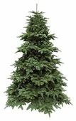 Triumph Tree Ель Нормандия темно-зеленая 1.55