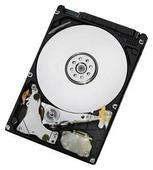 Жесткий диск HGST HTS547550A9E384