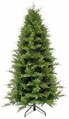 Triumph Tree Ель Королевская стройная