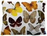 Подушка декоративная Marca Marco Milano 12, 45 x 45 см