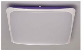 Светильник светодиодный MW-Light Ривз 674014501, LED, 50 Вт