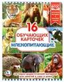 Набор карточек Умка Млекопитающие 21.8x16.7 см 16 шт.