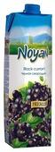 Нектар Noyan Черная смородина, с крышкой
