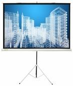 Рулонный матовый белый экран cactus Triscreen CS-PST-104x186
