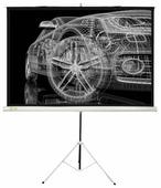 Рулонный матовый белый экран cactus Triscreen CS-PST-124x221